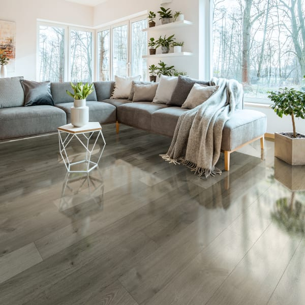 Dream Home 10mm Stockholm Silver Oak, High Gloss Laminate Flooring
