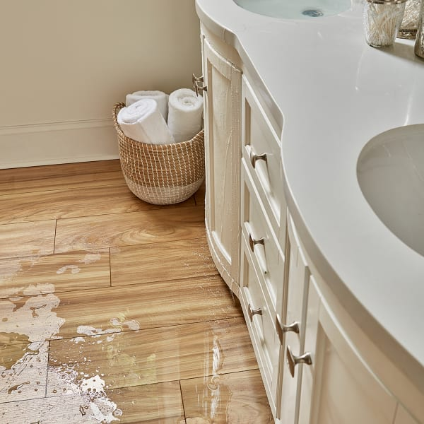 Aquaseal 12mm Desert Horizon Elm, Laminate Wood Flooring In Bathroom